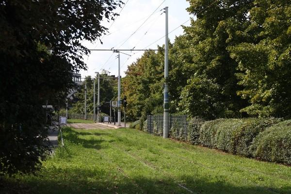 Rasengleis Neuenerplatz